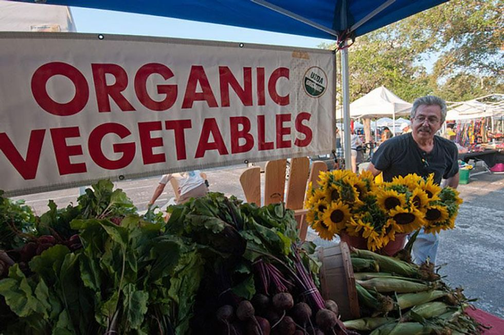 When to Buy Organic Fruits & Veggies (And When Not To!)