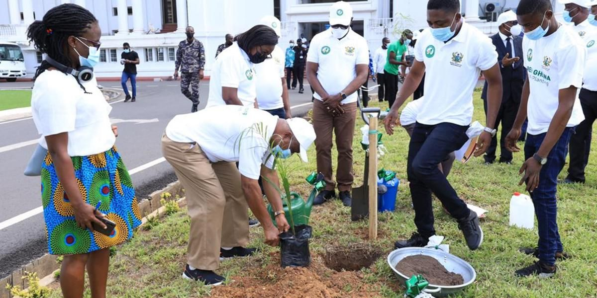 Ghana plants five million trees to combat deforestation.