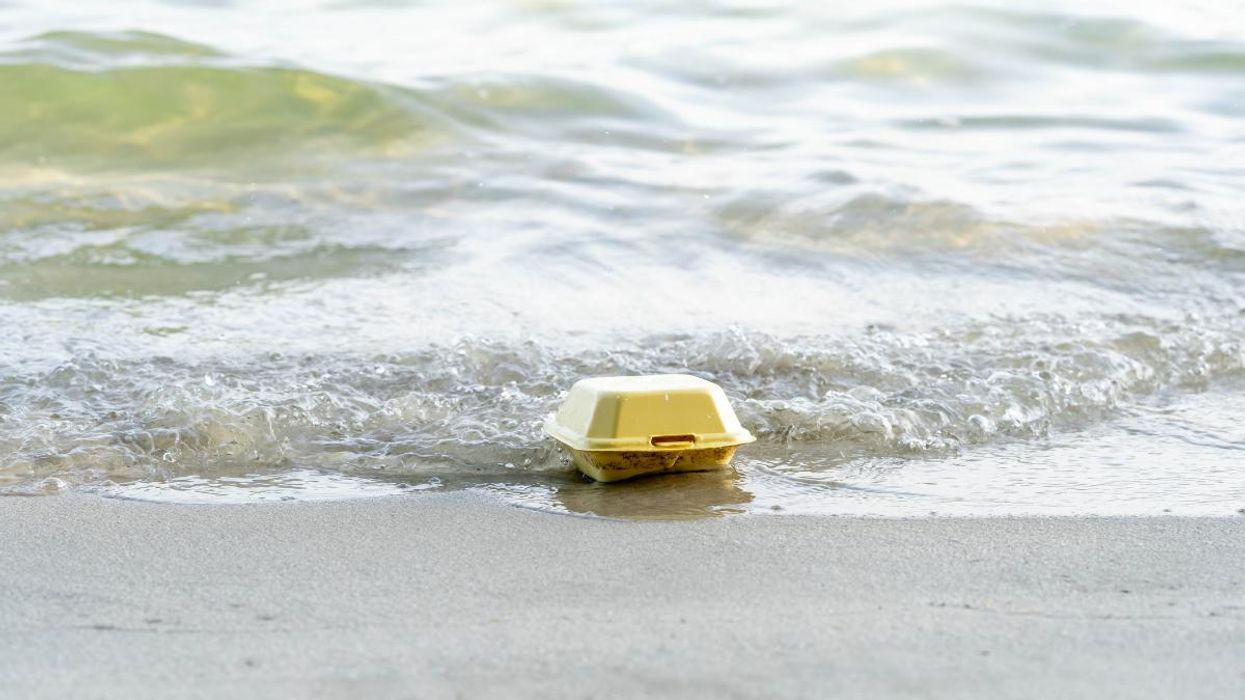 Takeout containers are among the most common plastics polluting the ocean.