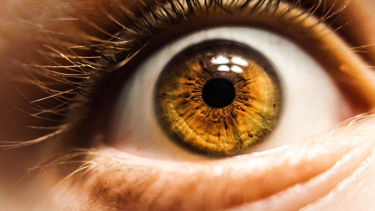 Close up image of a brown eye.
