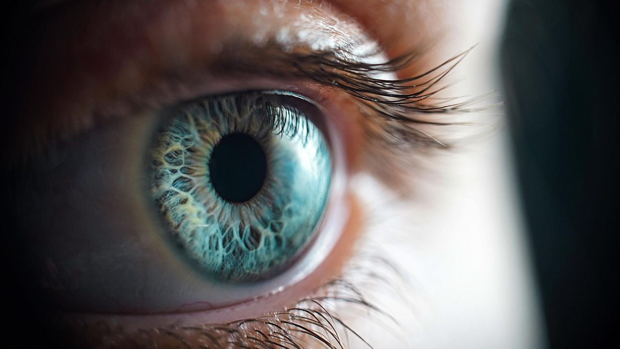 Pupil size surprisingly linked to differences in intelligence