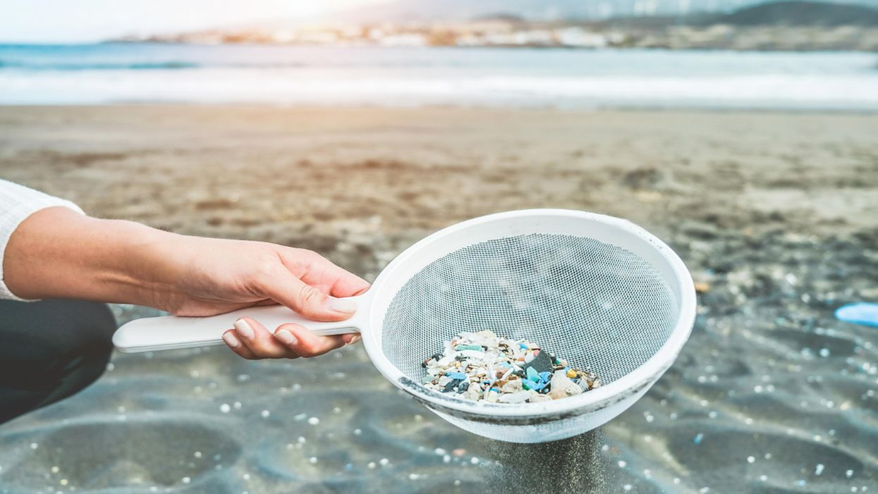 A woman cleans microplastics from sand on the beach.