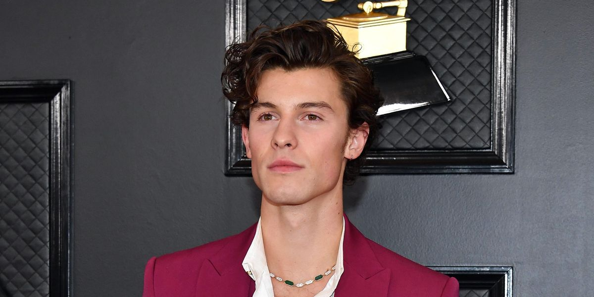 Shawn Mendes Opens Up About Body Dysmorphia