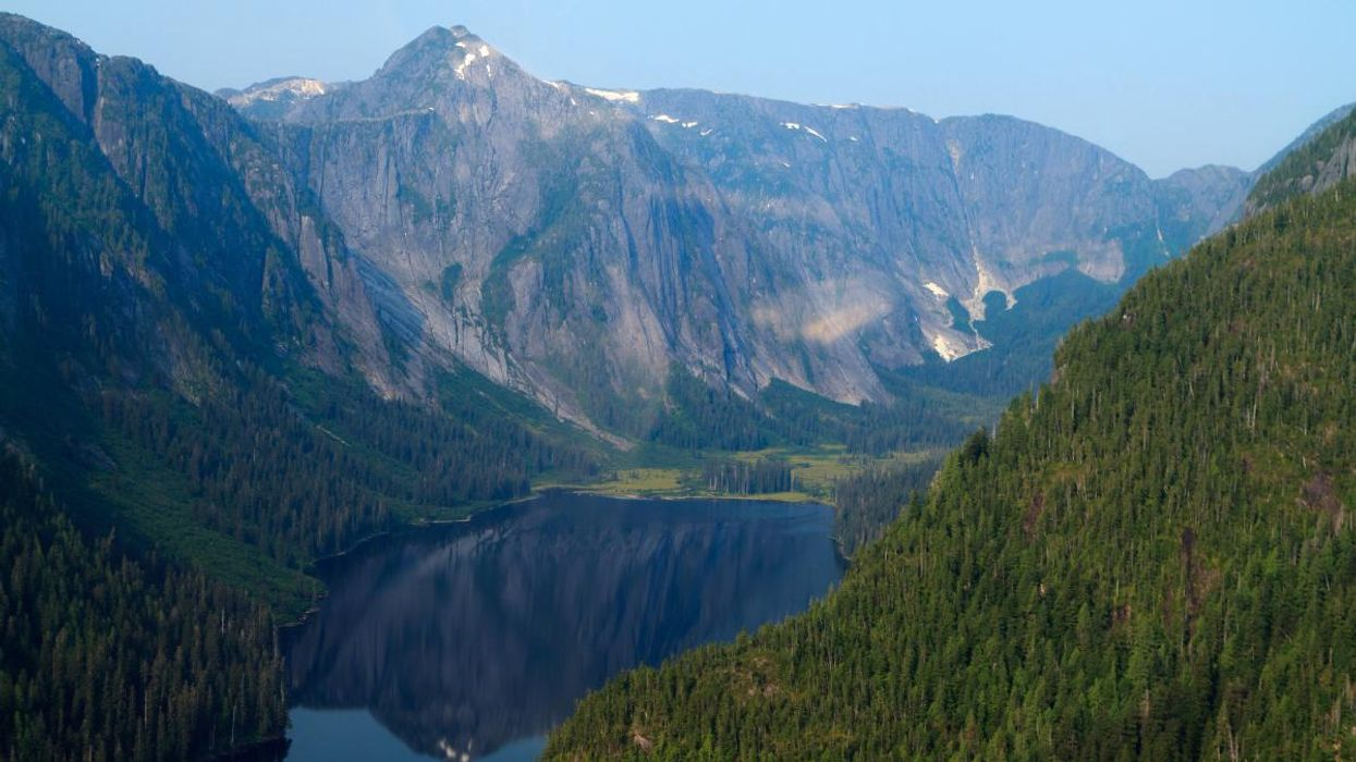 Biden to Restore Protections for Tongass National Forest in 'Critical Step' for Climate