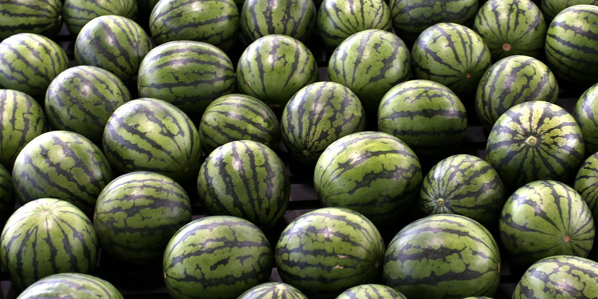 Almost No One Can Work Out How Many Watermelons in Viral Photo
