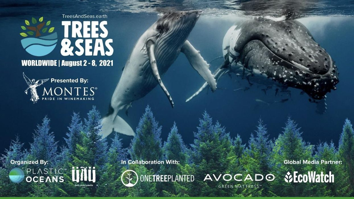 Trees & Seas Event Adds New Sponsor and Location as Launch Approaches