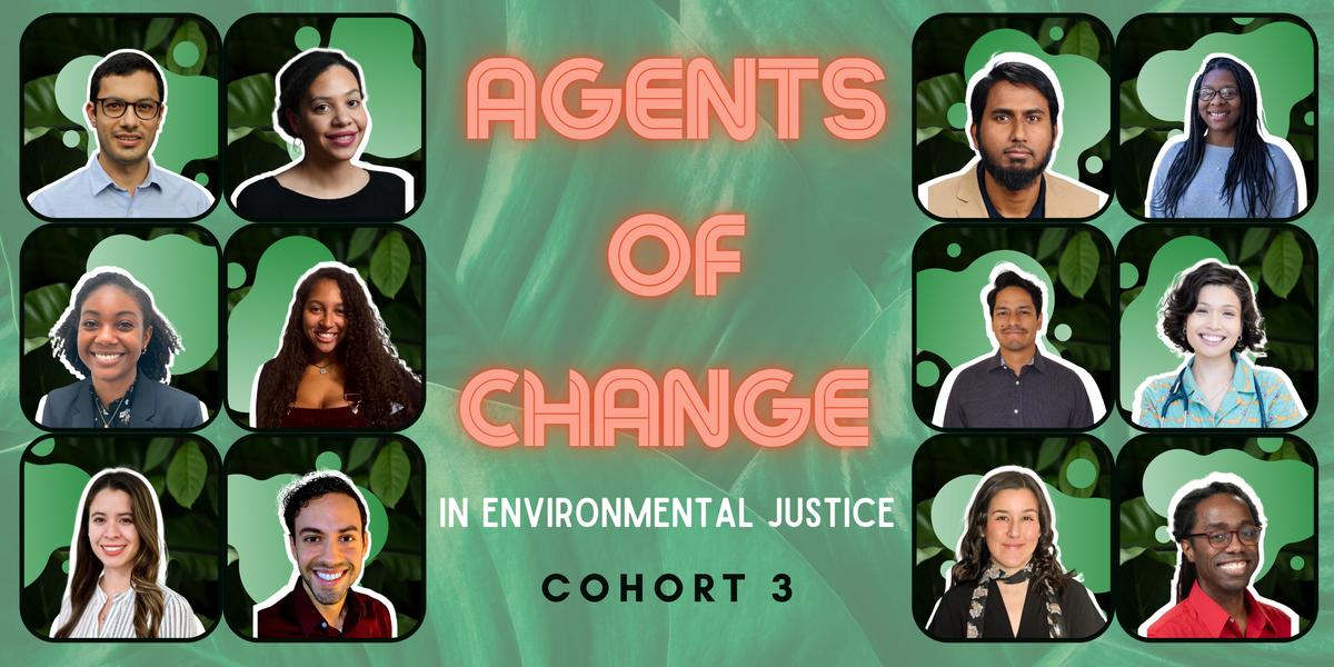 environmental justice fellows