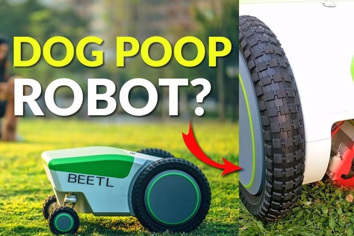 Somebody created a Roomba for dog poop and the world will never be the same
