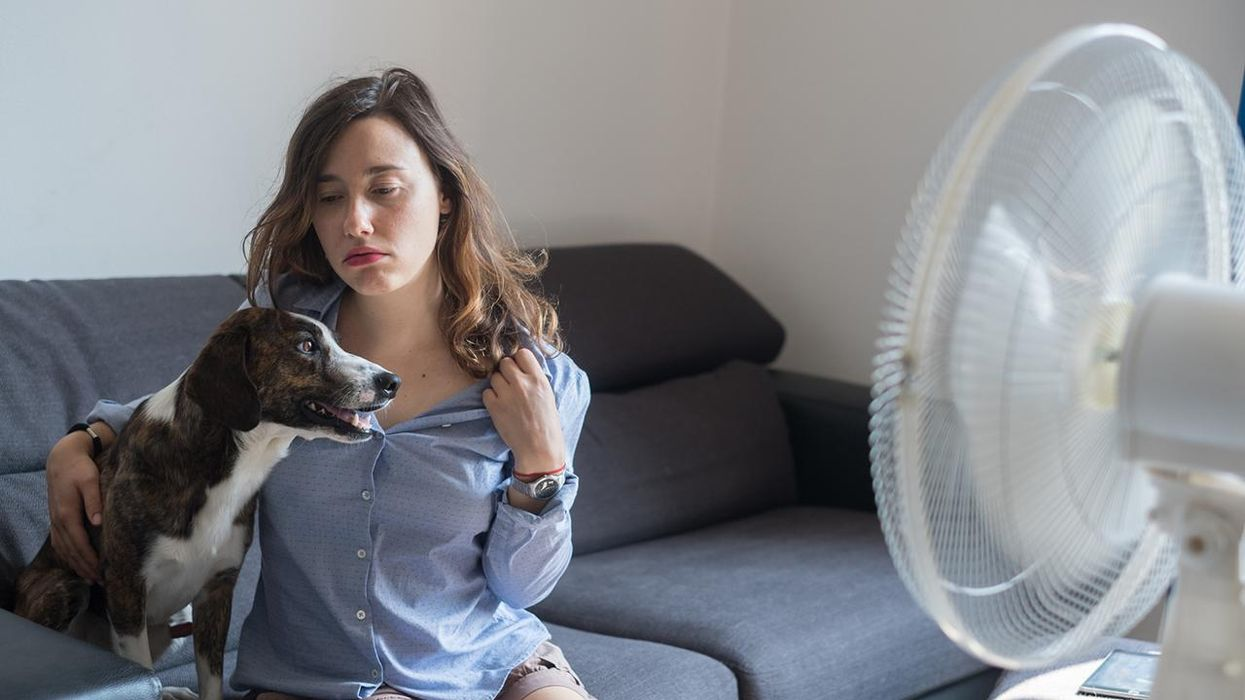 Young woman refreshing in front of cooling fan with her dog