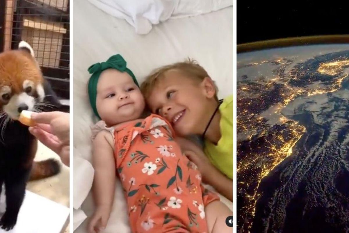 10 smile-worthy moments from this week to boost your mood