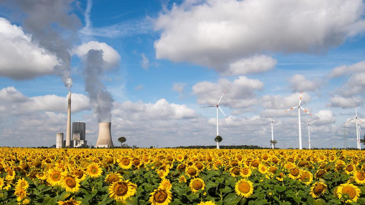 A field of sunflowers near the Mehrum coal-fired power station, wind turbines and high-voltage lines in Germany.