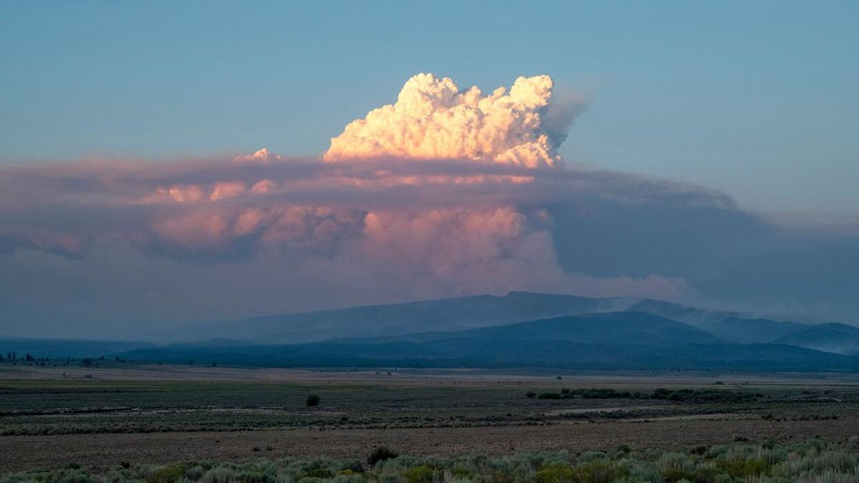 A pyrocumulus cloud from the Bootleg Fire.