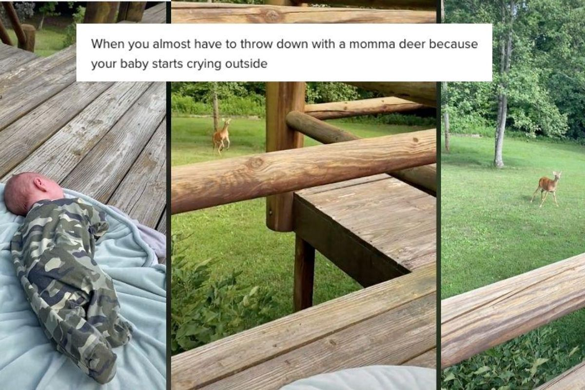 Mama deer came bounding into a yard when she heard a 5-week-old human baby crying