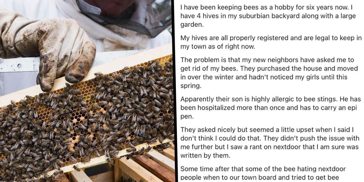 Neighbors Blast Local Beekeeper Who Refuses To Give Up Hobby for Kid With an Allergy