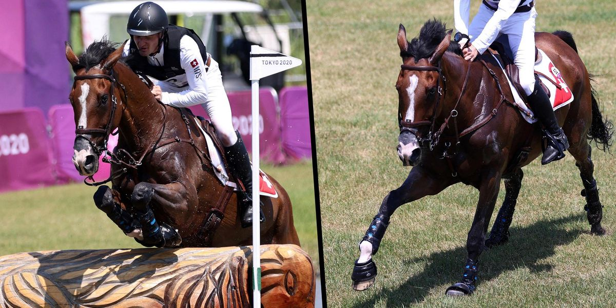 Horse Euthanized at The Olympics After Suffering Injury in Cross Country