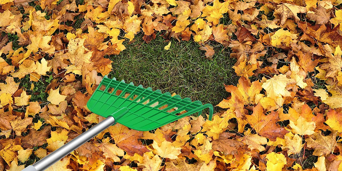 37 Clever Yardwork Products Everyone Needs