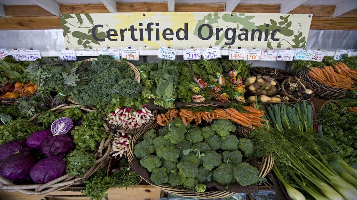 Organic Food Has Become Mainstream But Still Has Room to Grow