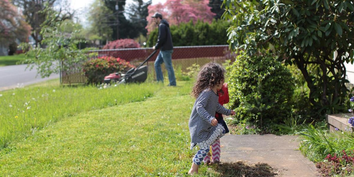 pesticide free lawn care