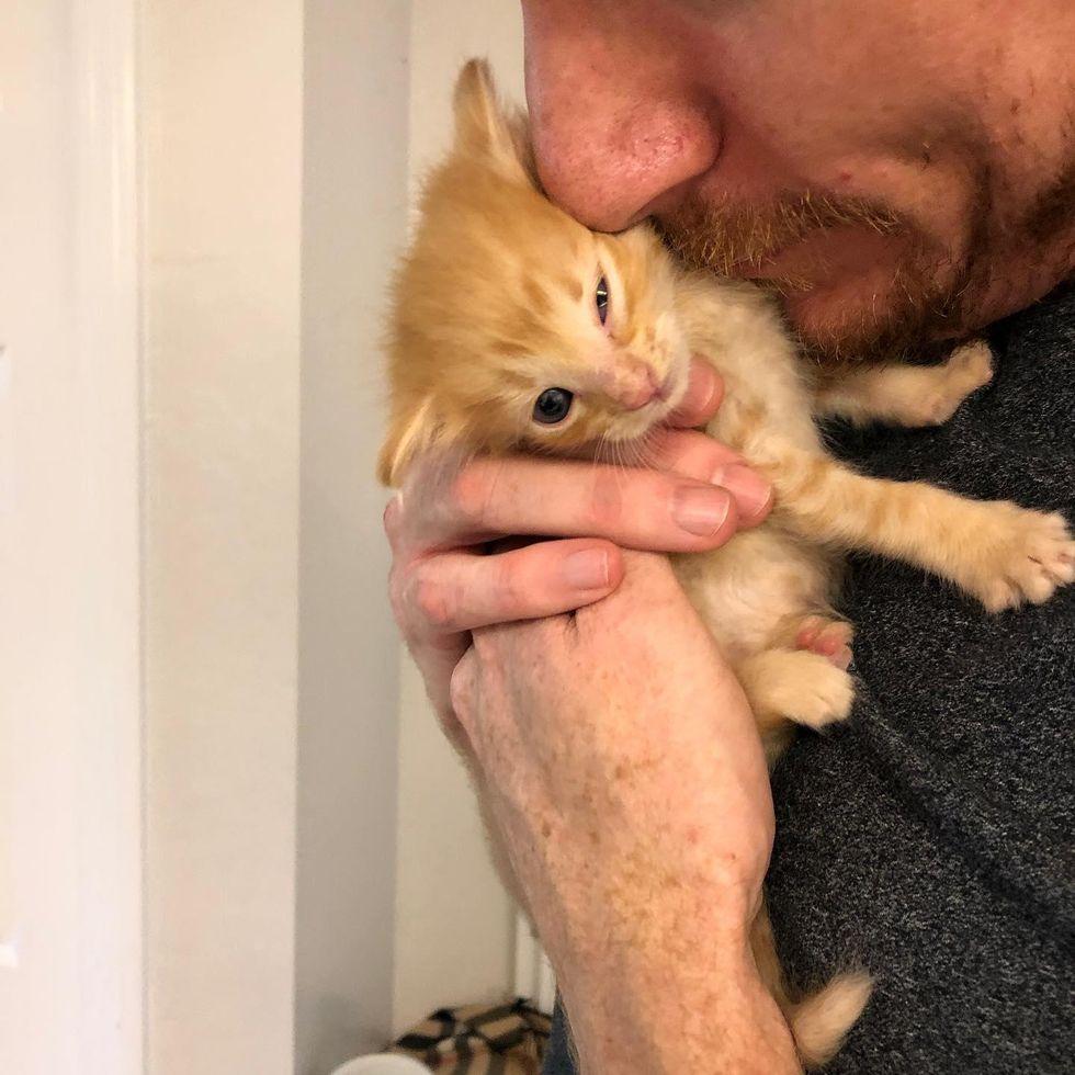 man cuddling kitten