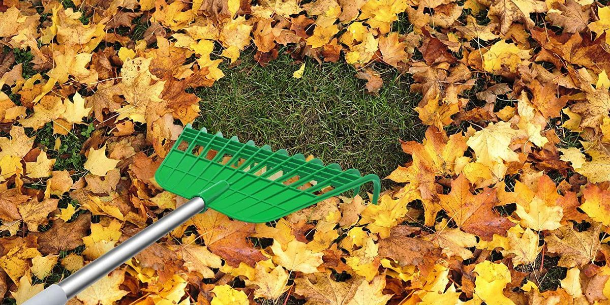 37 Outdoor Items Everyone Could Use for Fall