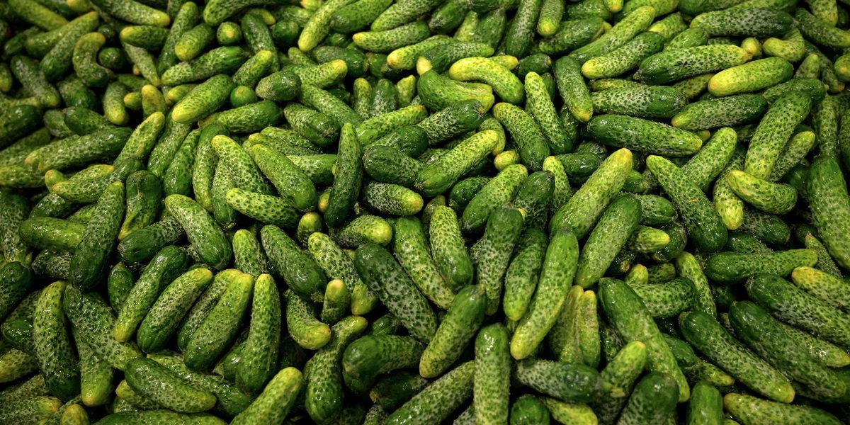 Amazon Is Selling Dill Pickle Ice Pops and People Actually Really Like Them