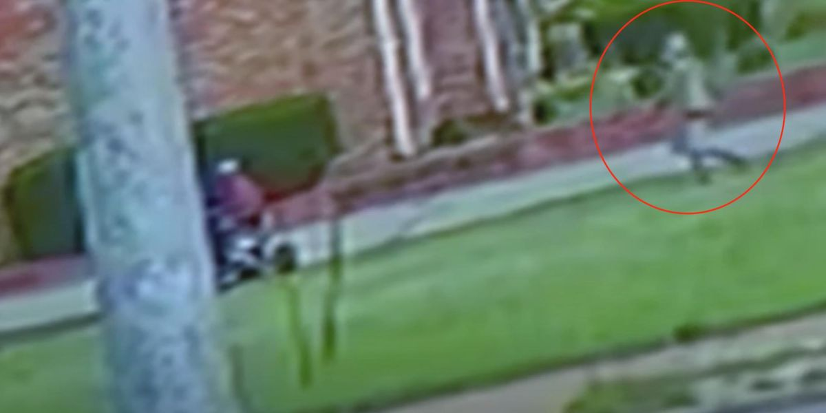 Security video captures armed thug stealing a go-kart from a grandma and 3 kids in broad daylight