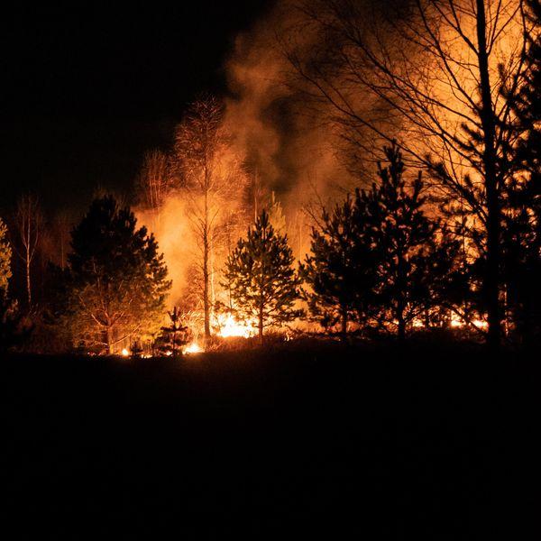 Hopkins wildfire prompts more California evacuations ahead of Biden visit