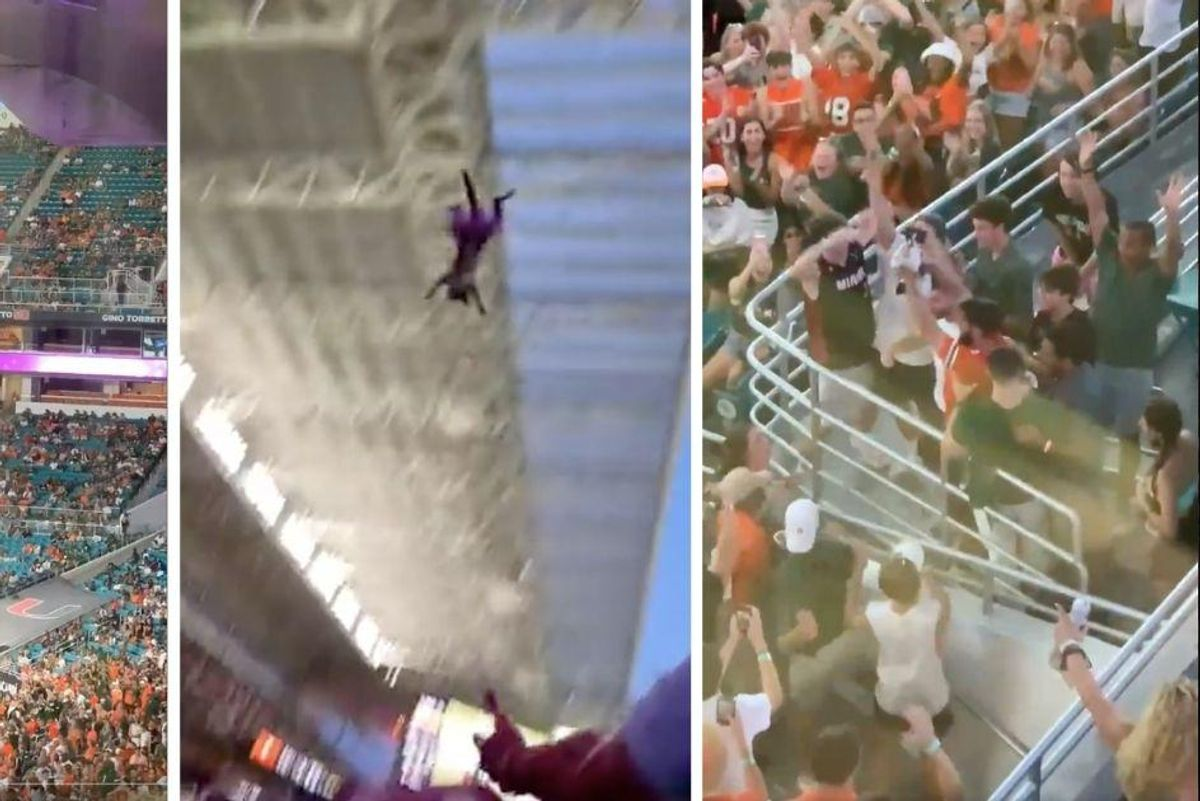 College football fans used an American flag to save a cat dangling from stadium upper deck