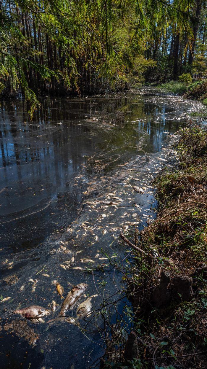 Climate change, sea level rise devalue some homes