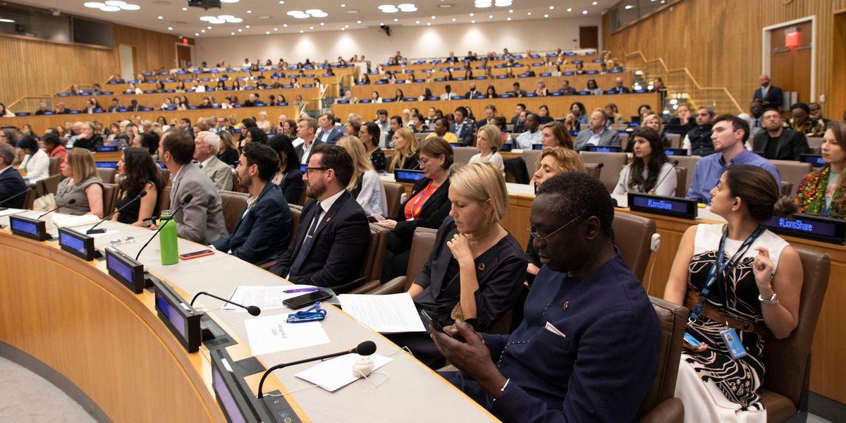 United Nations biodiversity
