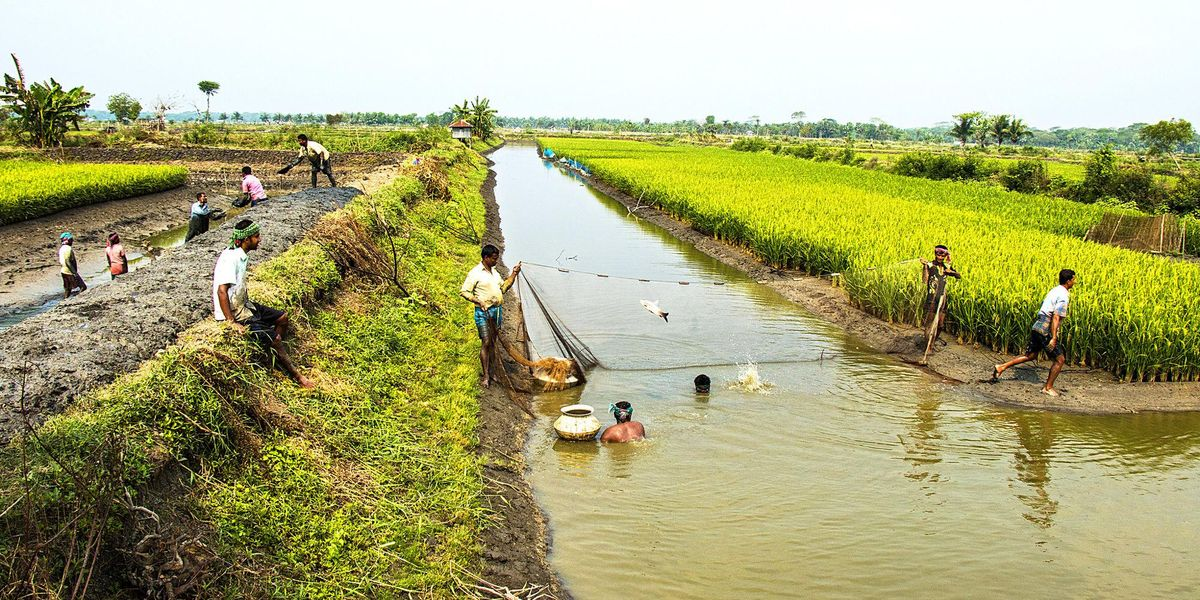 Weaponization of water in South Asia - Environmental Health News