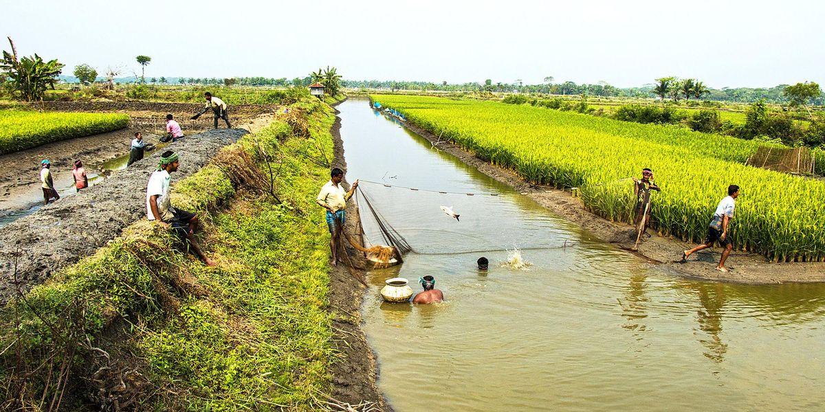 Bangladesh climate change water