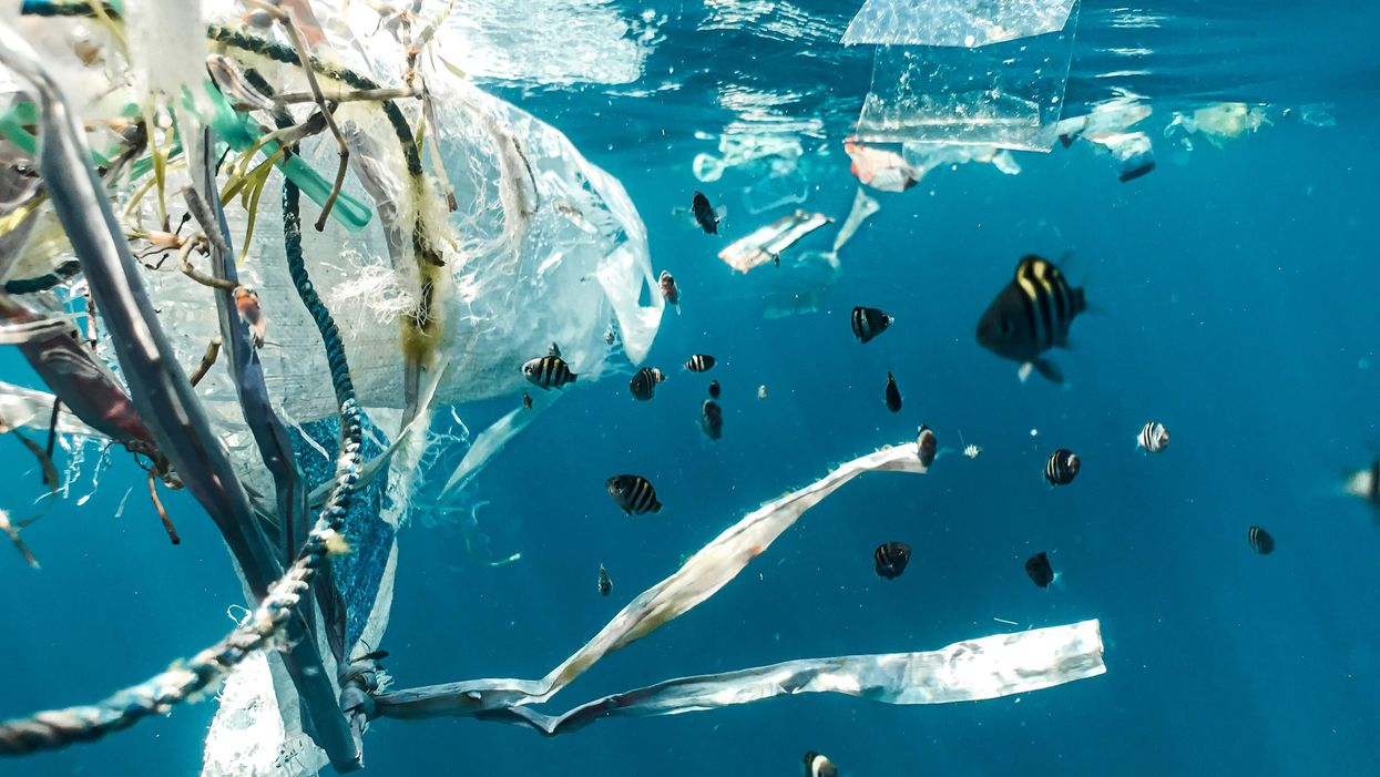 We're eating and drinking Great Lakes plastic. How alarmed should we be?