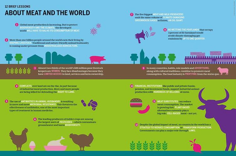 A Meat Atlas 2021 graphic summarizes meat's impact on the world.