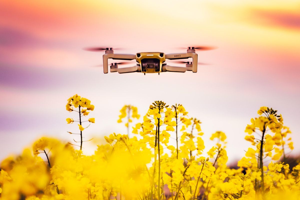 Bubble-dispensing drones aim to pollinate flowers