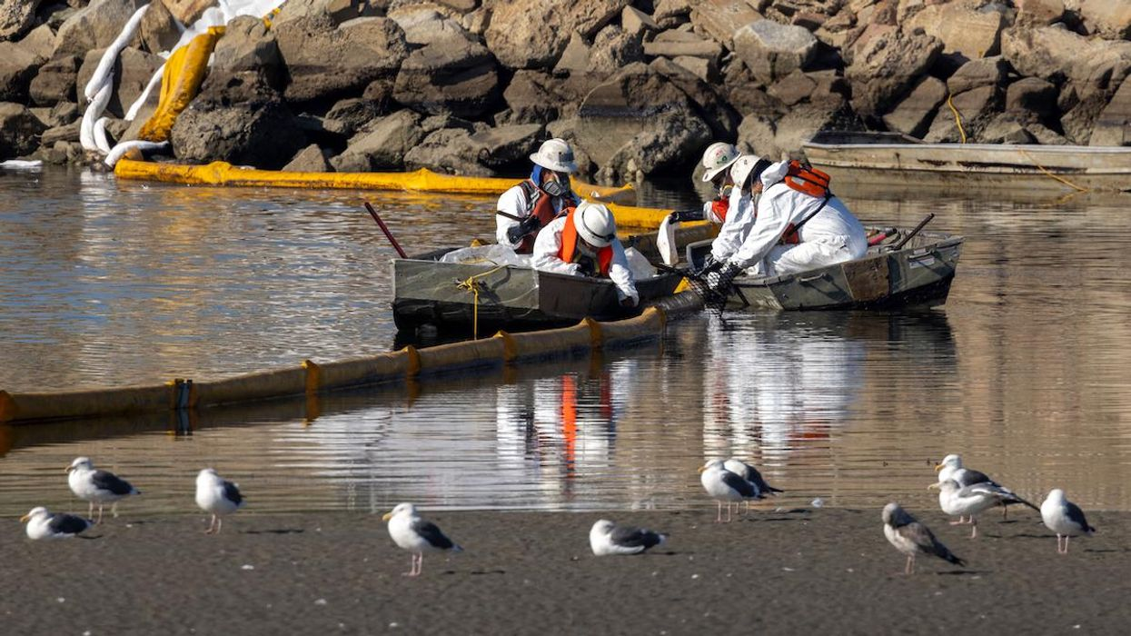 Workers in boats try to clean up floating oil near gulls.