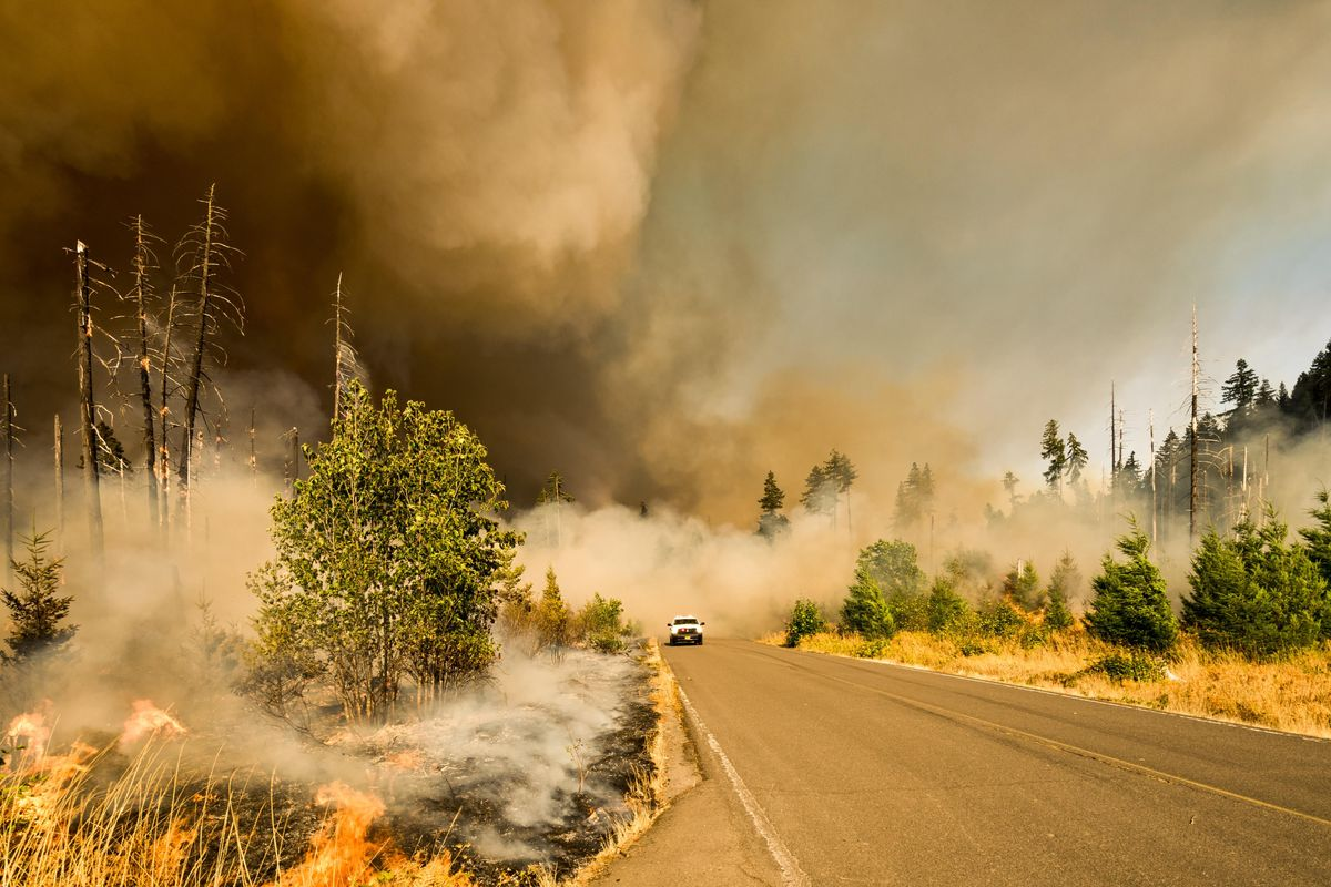 AQI: How to use air pollution and wildfire apps in your zip code