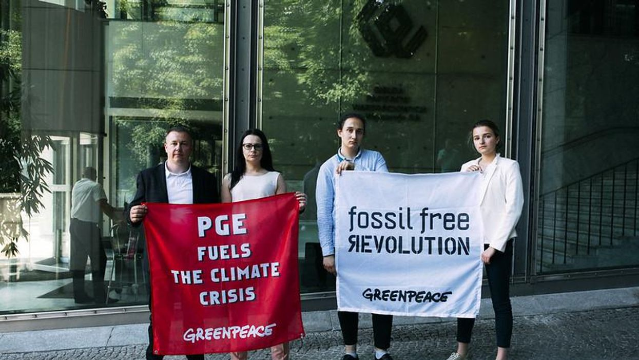 At 50, Greenpeace is an environmental success story — with a daunting future