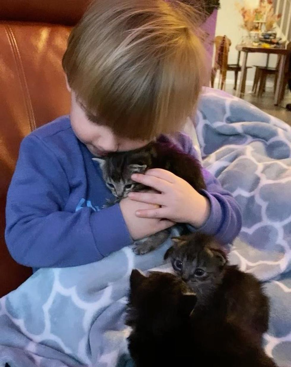 young caretaker, foster kittens