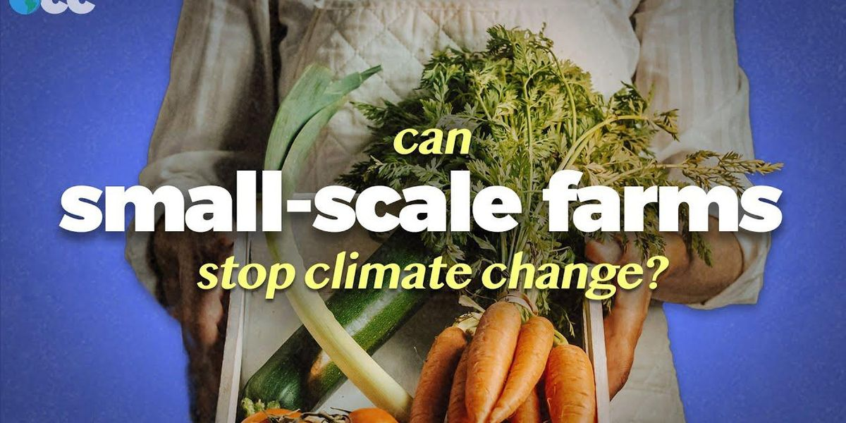 Can Small-Scale Farming Feed the World and Stop Climate Change?