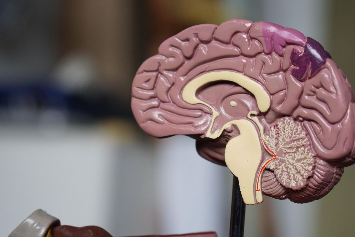 Patient's depression immediately 'switched off' using an experimental new brain implant