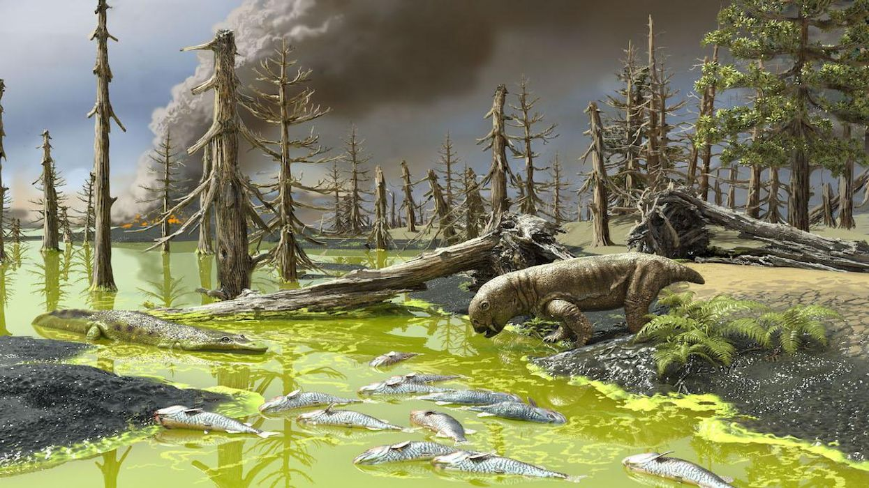 An artistic rendering of the Permian extinction event.