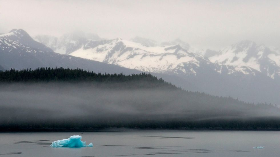 Biden to overturn Trump rule allowing roads in Tongass National Forest