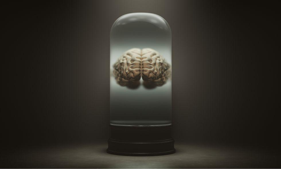 No brains in vats