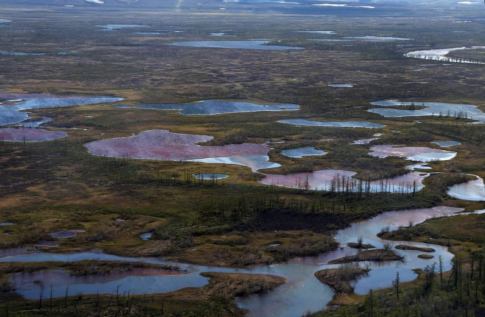 A disastrous summer in the Arctic