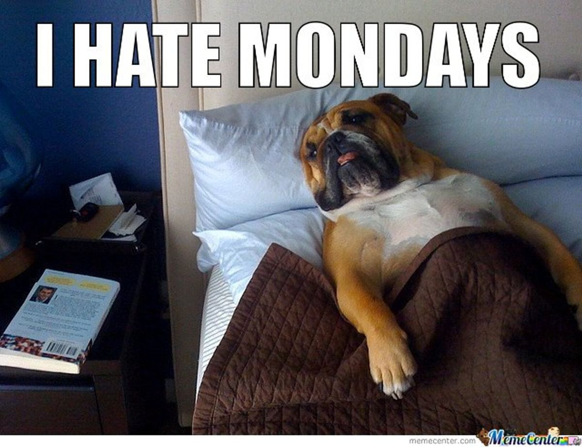 The Best Monday Memes To Get You Through The Week