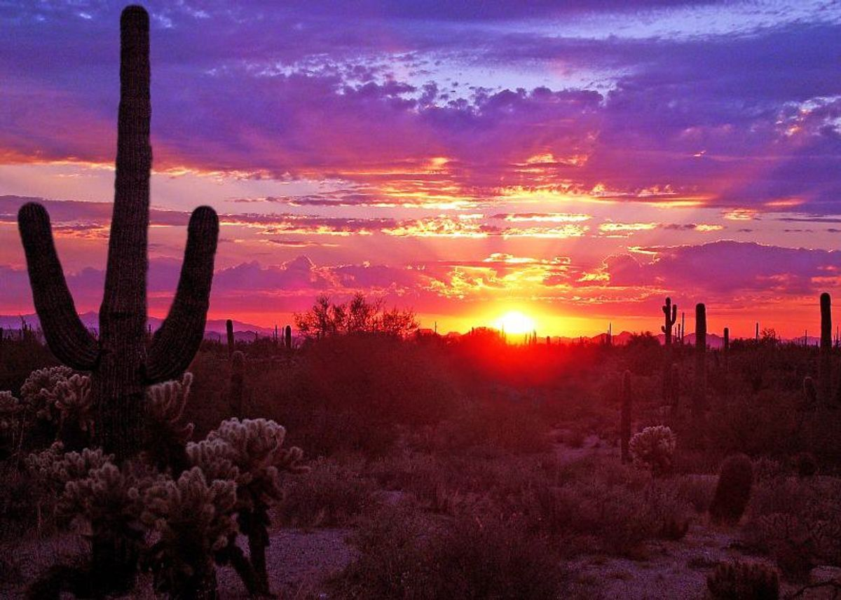 11 Reasons Why You Should Never Move to Arizona