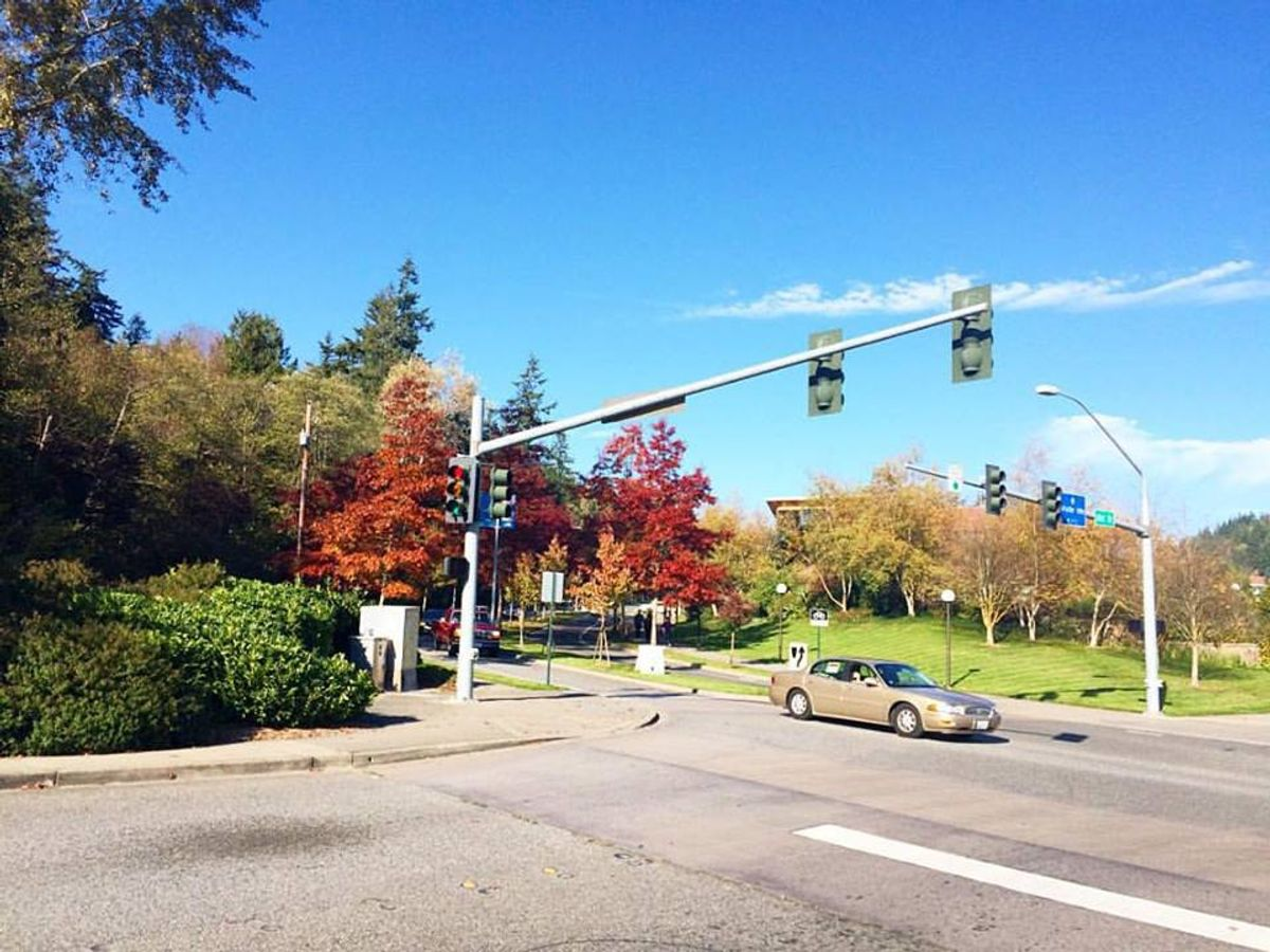 The Meaning Of Fall in Bellingham
