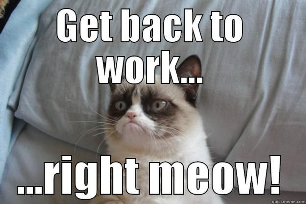 10 Things We've All Experienced During Finals Week Explained Through Cat Memes
