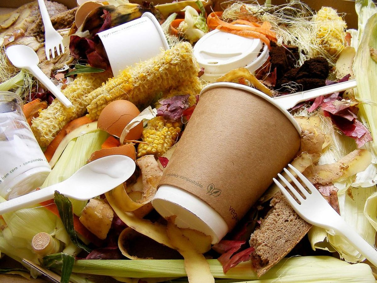 Don't Just Eat Less This New Year, Waste Less, Too